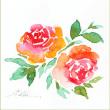 小さなバラ(ハガキ)