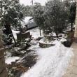 雪のお別れの会