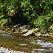 海部川の鮎釣り