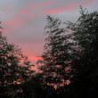 夕暮れと、朝の太陽と。