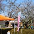 世界遺産富岡製糸場と絹産業遺産群広報活動in桜山冬桜まつり