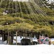 金沢・長町武家屋敷と冬の兼六園フォト探訪 ■2018_2_17