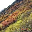 北海道移住体験108 (息を呑む美しさ 黒岳の紅葉)