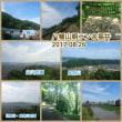 【モブログ】福井中心部の展望を独り占め!八幡山