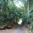 藤沢市石川丸山谷戸を散策しました