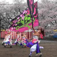dance company REIKA組さん