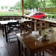 緑に囲まれた一軒家 cafe T-lappolaさんでパスタランチを!