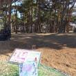 ひたち海浜公園の地上絵 2017.12.13