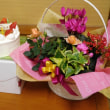 本屋親父のつぶやき 1月17日 祝  留美子さんの誕生日