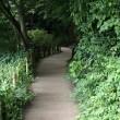 石神井公園へ!