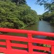 445番 昨年の北海道旅行 その8