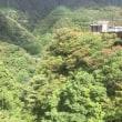 箱根 宮ノ下 箱根 自然薯の森 山薬が更にご利用しやすくなりました♪ | 箱根自然薯の森 山薬