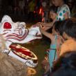 菊池の白龍祭り