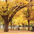 ・ 日記平成27年10月18日~