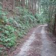 91 つつじ尾根から愛宕山三角点、下山は社務所裏道 2017.10.14