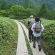 小田代ヶ原の幻の湖と「奥日光刈込湖・切込湖」ハイキング(2)