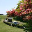 箱根でゴルフ