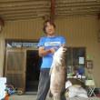 またまた日和佐港で「アカメ」が釣れた!
