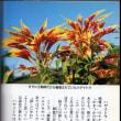 カラーブックス 『王朝の植物』