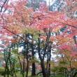 出雲・松江・京都の旅  長旅でした~