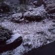 イマニワ~さらっと積雪