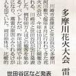 多摩川花火大会、8月から10月に変更されることになりました。今年は10月13日開催です!