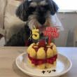 カフェむすびでお友達のお誕生日をお祝いしました☆