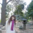 あれっ旧古河庭園が・・・