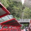 シーニック・レイルウェイ:トロッコ列車