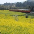 小湊鉄道 2