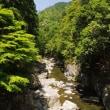 京都 高雄 清瀧川週邊的散步