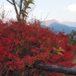 山陰の旅 修験道の山・水の山(2)