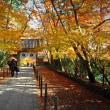 朝のメジャーでない京都郊外を楽しむ