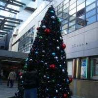懐かしきクリスマス写真(遅)