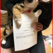 愛玩動物飼養管理士・合否結果が届きました