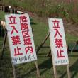 宮崎・生駒高原コスモス祭り
