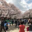 旅行第8日目〜最終日(東京)