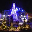 クリスマスツリーのイルミネーションが点灯しています@ニッケコルトンプラザ