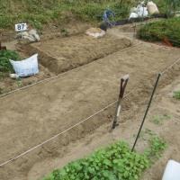 玉ねぎの畝作りをした・・ふう、疲れた!