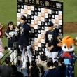 8/22 オリックスvs日本ハム17回戦@ほっともっとフィールド神戸