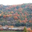 山の紅葉を撮って来た その2