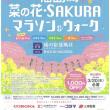 福島潟 菜の花・sakuraマラソン&ウォーキング