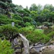 真鍋庭園 その1