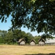 10月1日にじの森開催します。新しいテントを立てます