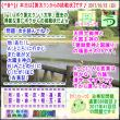 [古事記]第288回【算太クンからの挑戦状2017】(文学・歴史)