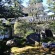 京の冬の旅'18 妙心寺 東海庵