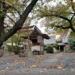 大阪市内の隠れ紅葉の名所 光傳寺