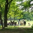 暑い夏の武蔵野中央公園です 其の1