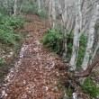 氷ノ山 春雪 コシキ岩で撤退
