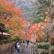 錦秋の京都~天龍寺から嵯峨野~